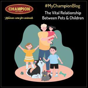 The Vital Relationship Between Pets & Children